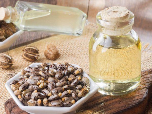 Olio di ricino e semi