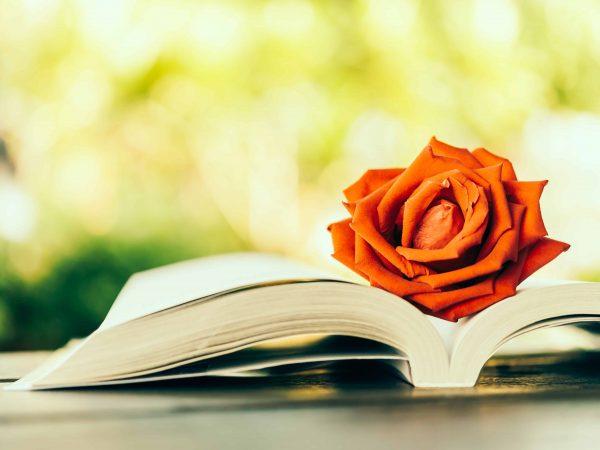 libri-romantici-principale-xcyp1