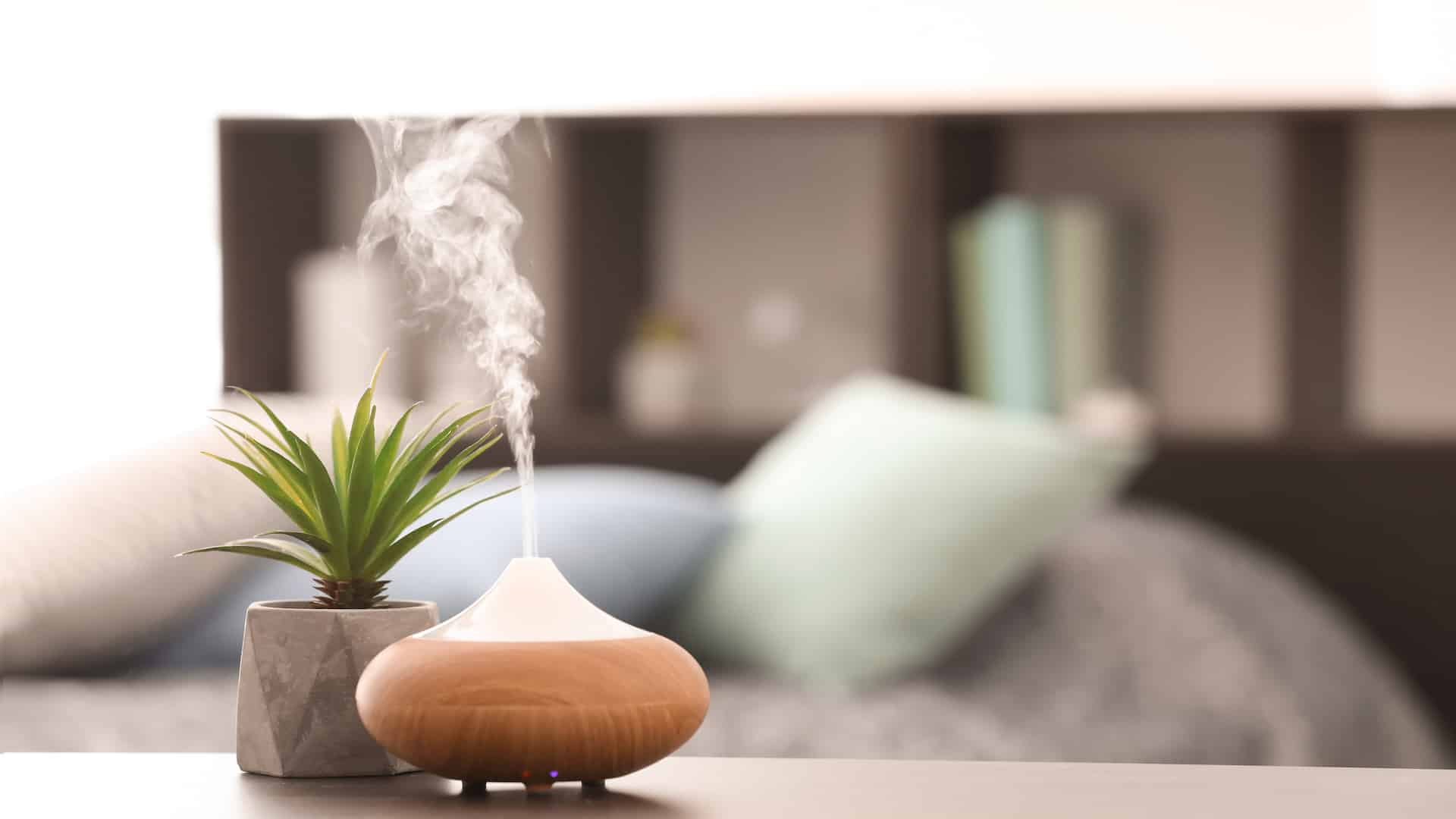 Miglior profuma ambienti 2020: Guida all'acquisto