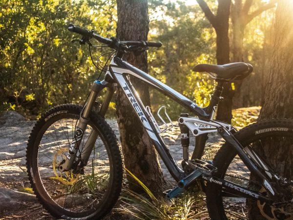 Mountain bike appoggiata ad un albero