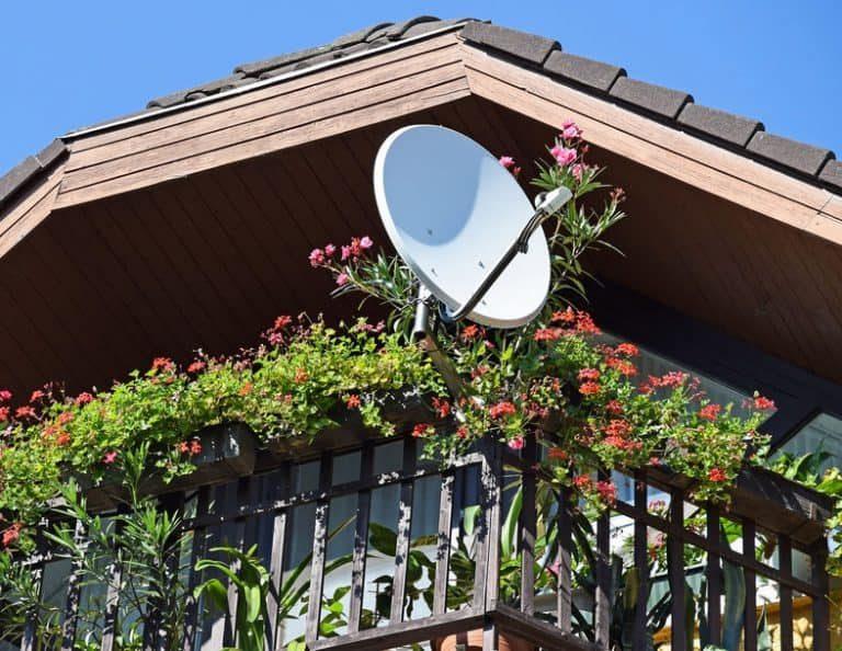 Antenna parabolica in mezzo a fiori