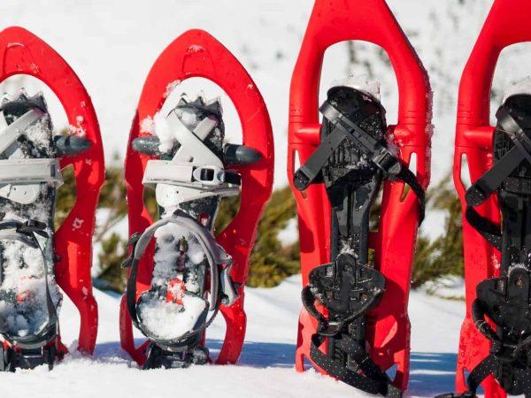 Due paia di ciaspole nella neve