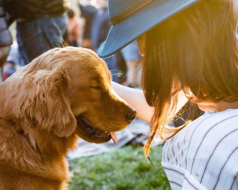 Woman caressing a dog