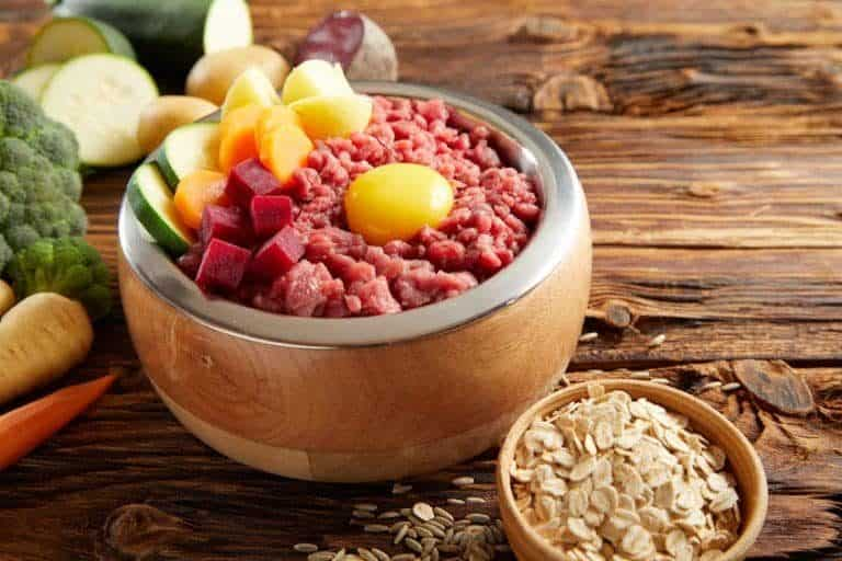 BARF diet food for dogs