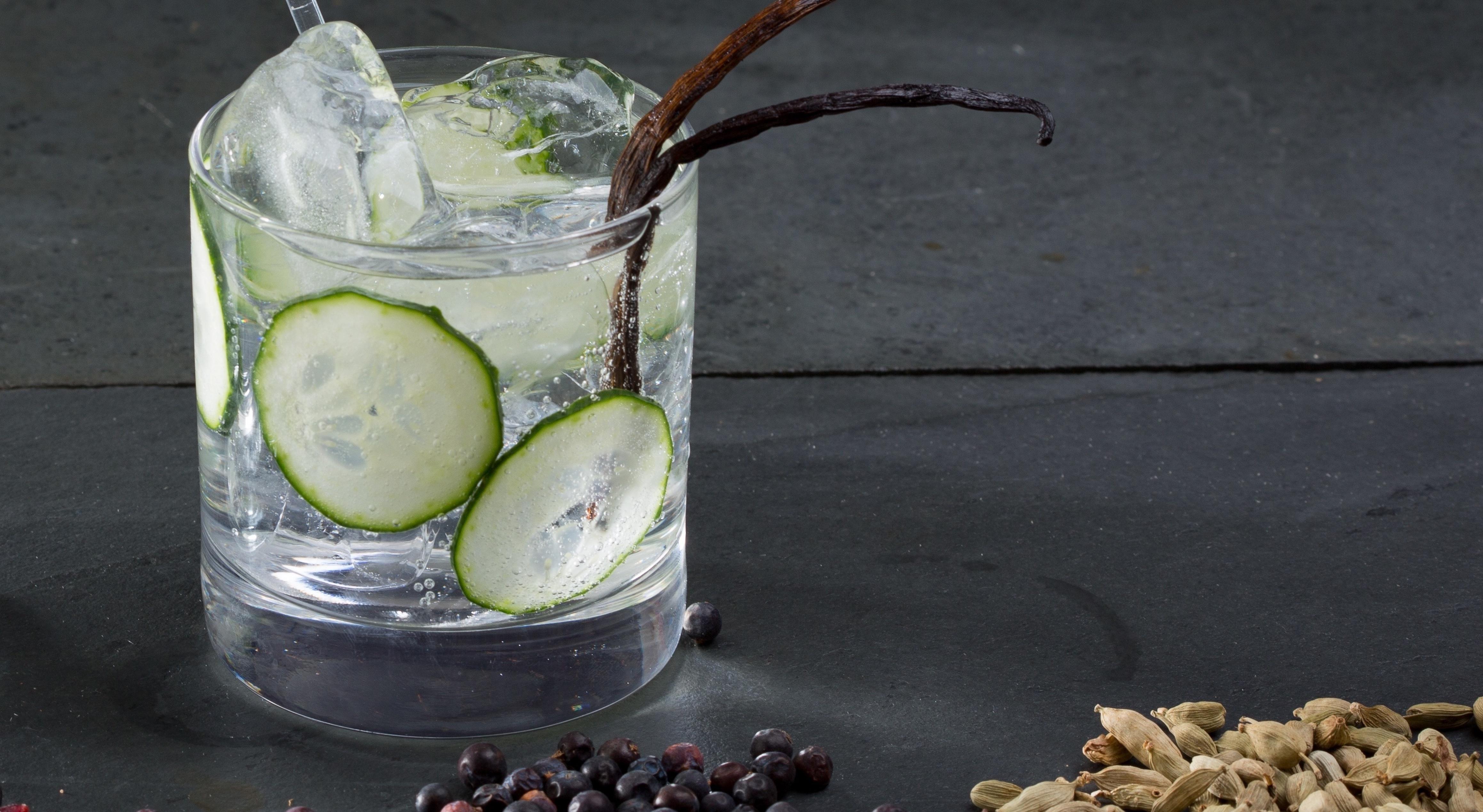 Miglior gin 2020: Guida all'acquisto