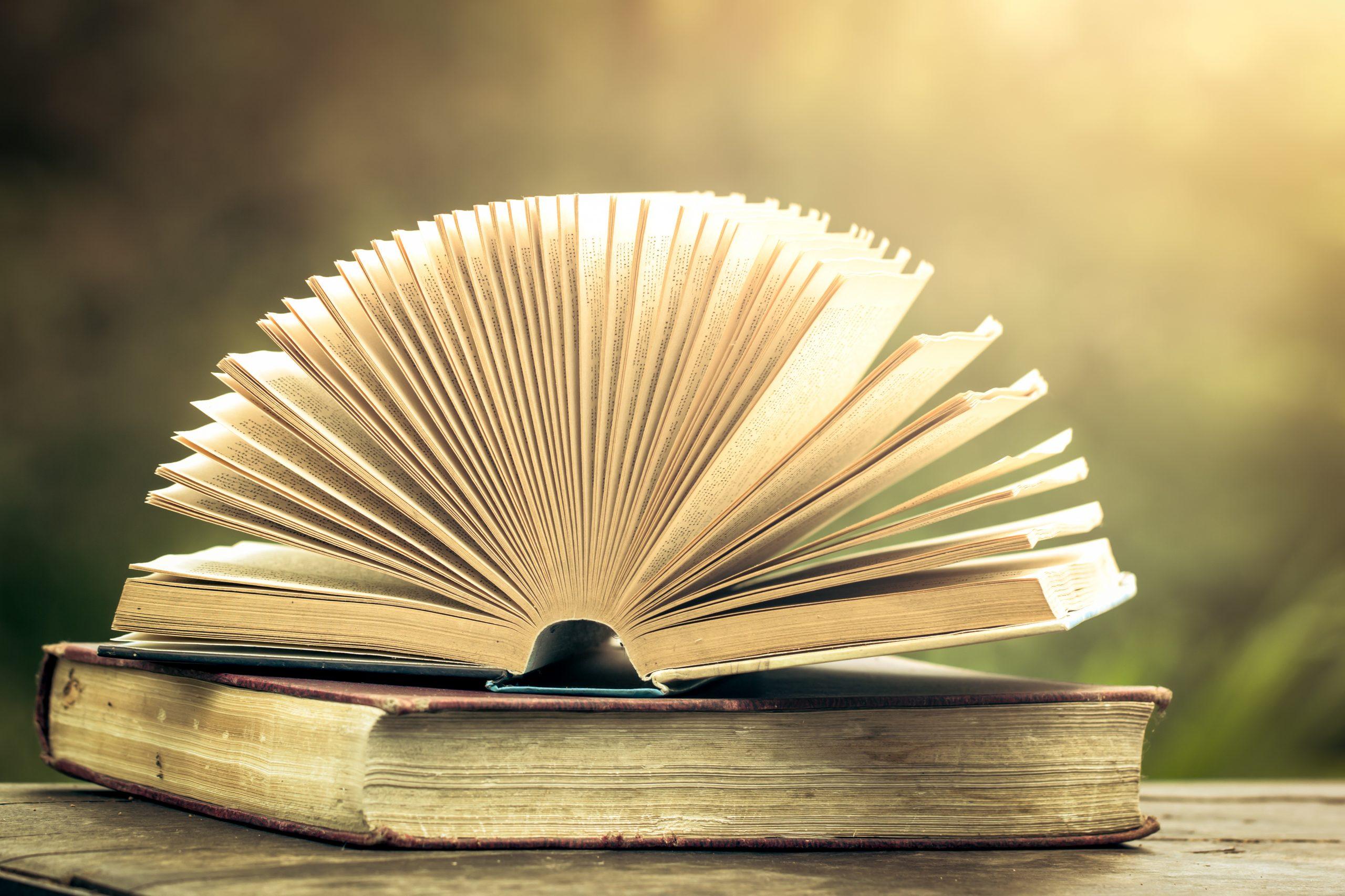 Migliori libri fantasy 2020: Guida all'acquisto