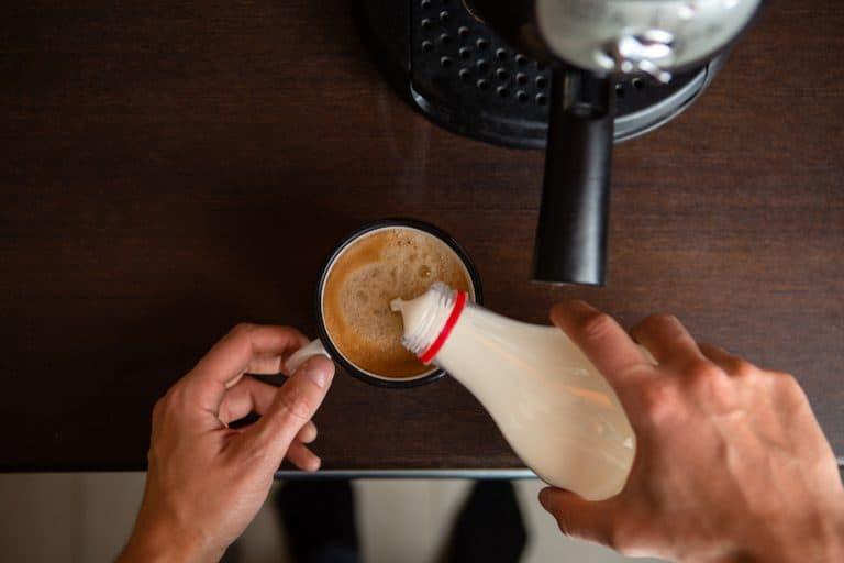 macchina-da-caffe-a-cialde-prima-xcyp1