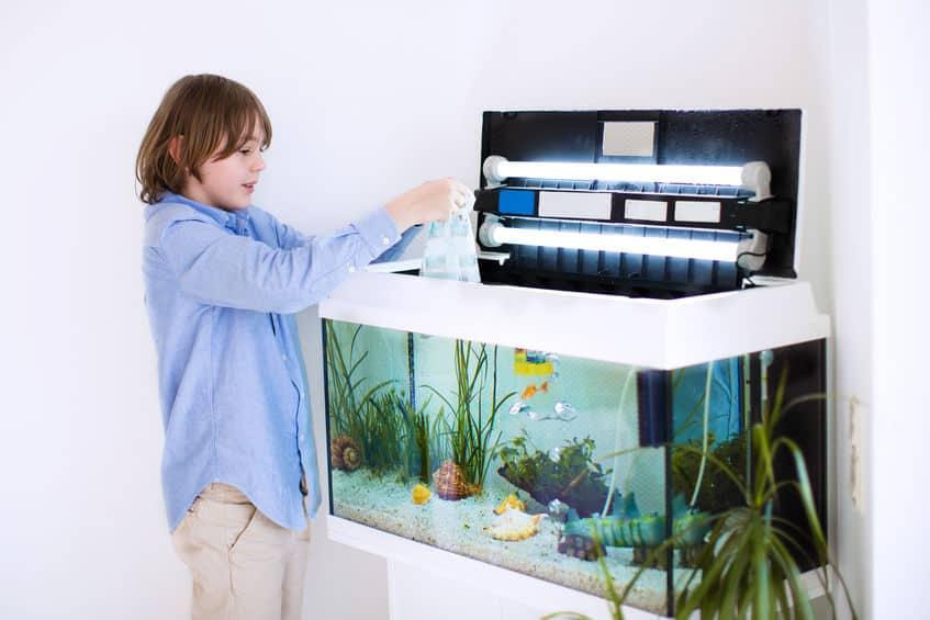 aquarium-for fish-xcyp1