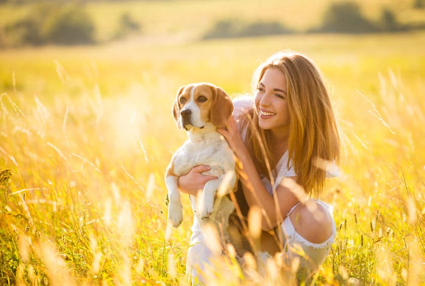 cibo-ipoallergenico-per-cani-terza-xcyp1