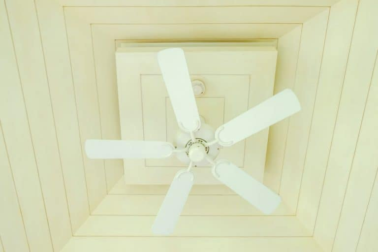 ventilatore-a-soffitto-pale-xcyp1