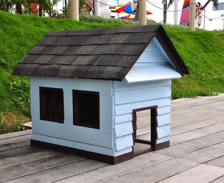 White and brown dog house