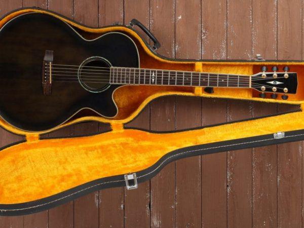 Custodia con chitarra