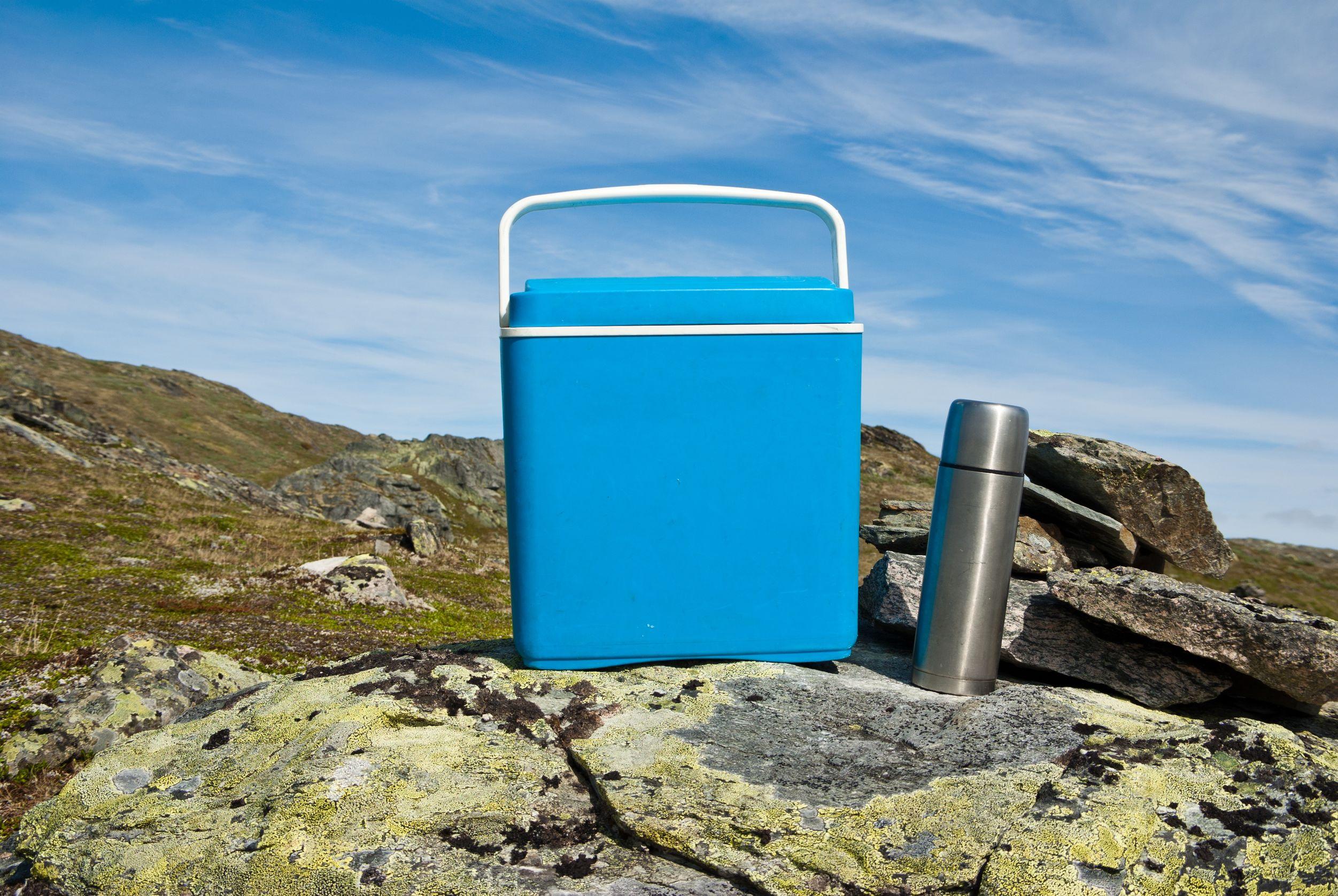 Miglior frigorifero portatile 2020: Guida all'acquisto