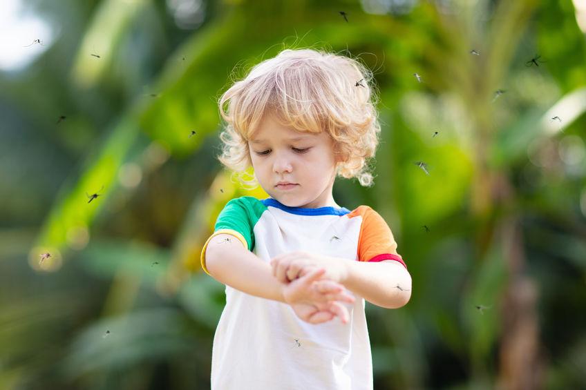 Bambino circondato da zanzare