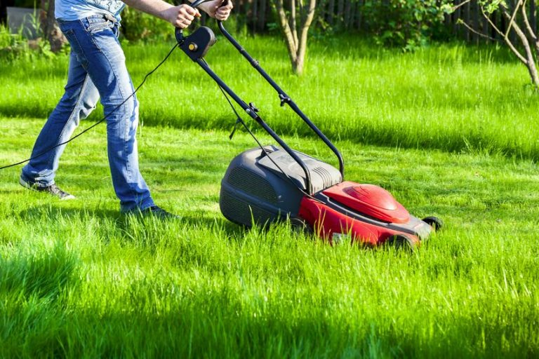 Persona che taglia l'erba