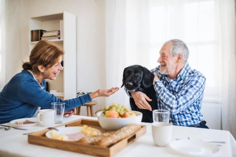 Persone anziane che si occupano di un cane