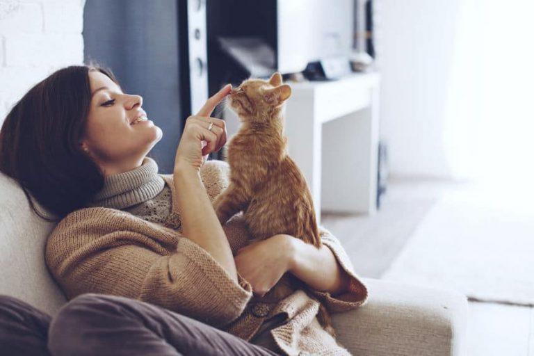 Mujer acariciando su gato en el sofá