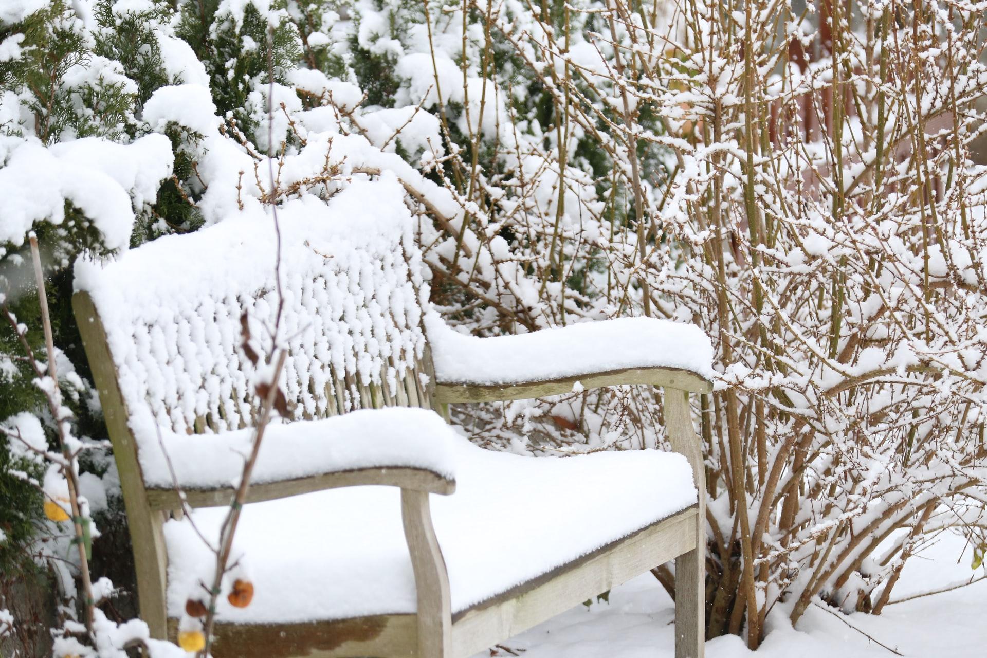 banco lleno de nieve