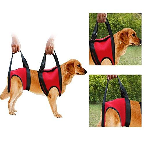 Filfeel Cablaggio per cani, Pet Walking Aid Lifting Pulling Vest Sling Support Riabilitazione per cani anziani e feriti(Rear Leg - L-Red)