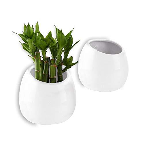 ComSaf Vaso per Pianta a Muro Bianco 10CM Ceramica Set di 2, Vaso da Fiori Cono per Vaso da Parete o Decorazione Casa e Ufficio per Matrimonio, Compleanno, Festa, Natale