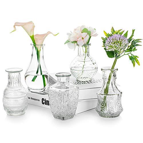 Glasseam Vaso di Vetro per Fiori Set di 5 Vasi di Gemme Vintage Trasparenti Dolce Mini Pisello per Centrotavola Decorazioni per Interni
