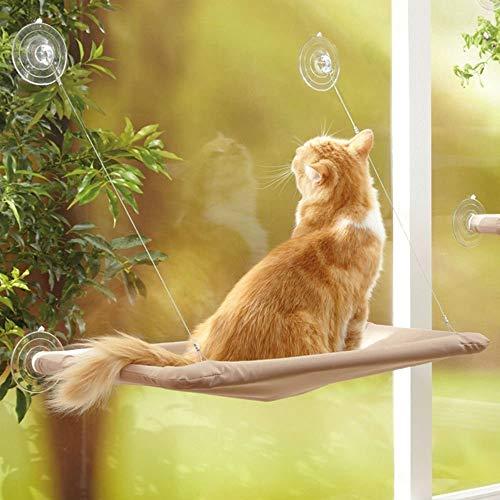 Cat Window Persch, Cat Window Amaca Gatti Kitty Safety Bed con ventose Heavy Duty Cuccia salvaspazio montata su finestra Cat Resting Seat Hold per gatti di grossa taglia può contenere fino a 50 libbre
